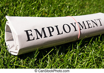 employment newspaper on meadow