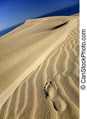 empreinte, dune