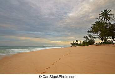empreinte, plage, désert