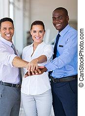 empresa / negocio, equipo, juntos, su, poniendo, Manos