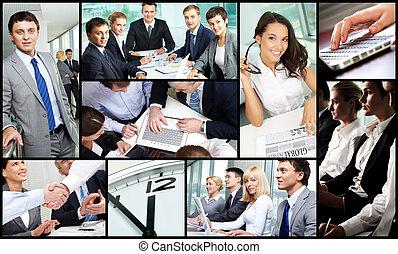 empresa / negocio, ocupación