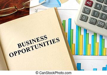 empresa / negocio, oportunidades