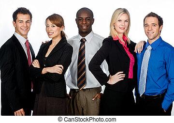 empresa / negocio, profesionales
