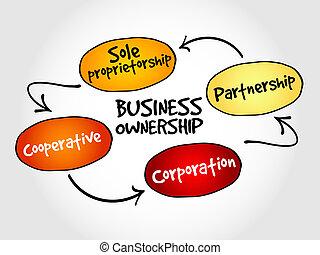 empresa / negocio, propiedad