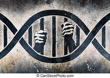 emprisonné, cage, adn