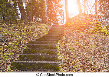 Empty ancient staircase in the park