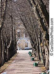 Empty avenue