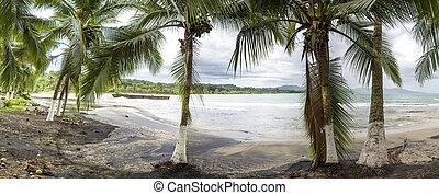 Empty beach in Puerto Viejo, Costa Rica - Panoramic view of...