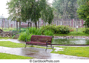empty bench at the zoo on a rainy day