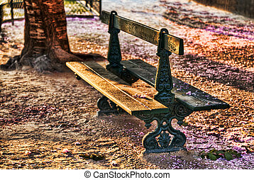 Empty Bench in Spring