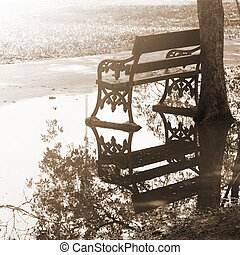 Empty bench in the park after raining