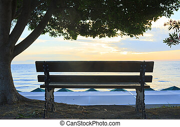 Empty Bench with a tree on the background of the sea at sunrise