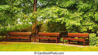 Empty benches in a beautiful park. Serenity and loneliness ...