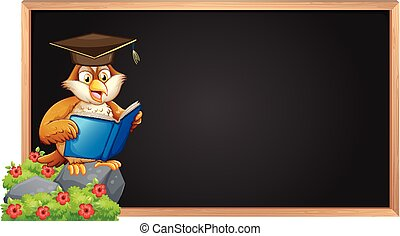 Empty blackboard and owl reading book