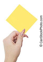 empty blank in woman hand