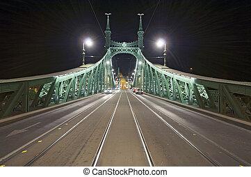 Empty bridge by night wide