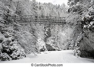 Empty bridge over frozen river in forest