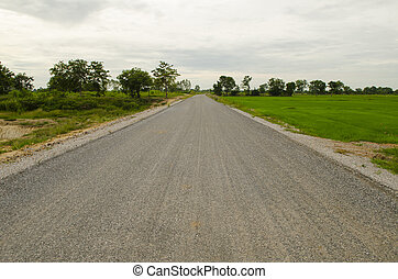 Empty countryside road through fields