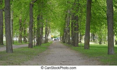 Empty footpath in spring Marienthal park in Pavlovsk, Saint ...