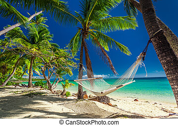 Empty hammock in the shade of palm trees on tropical Fiji...
