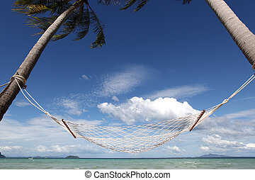 Empty hammock on beach