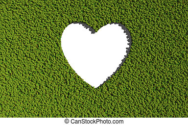 empty heart create by tree with white background