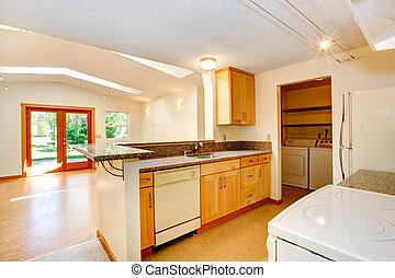 Empty house interior with open floor plan. Living room and kitch