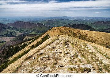 Empty mountain trail