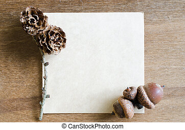 Empty Paper Sheet With Acorns and Cones.