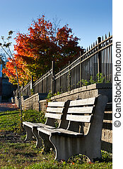 Empty park benches in the autumn