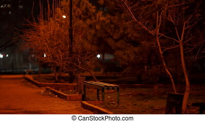 Empty park path at night, bench on a dark footpath in the fall, street lights illuminate a lonely alley.