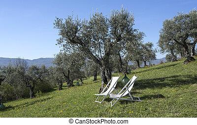 Empty patio chairs