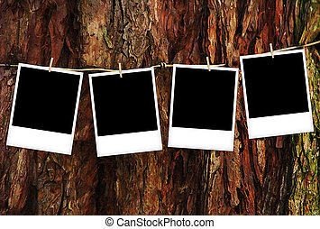 Empty polaroid photo frames over wooden background