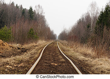Empty Railway Track in the Countryside