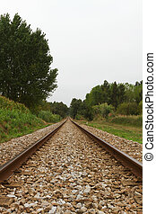 Empty Railway track trough woods on cloud day