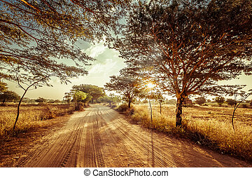 Empty road going through rural landscape under sunset sky with sun beams. Dry season in southeast asia, Myanmar (Burma). Nature background in vintage style