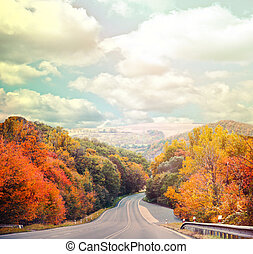Empty road in autumn forest against blue sky