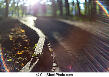 Empty road  in sun light on sunset. Paved pavement