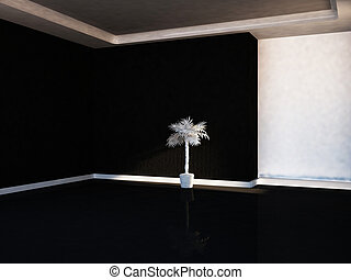 empty room in contrast colors