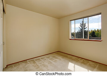 Empty room interior with carpet floor