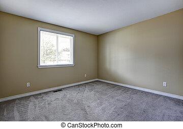 Empty room with grey carpet floor