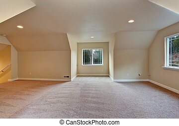 Empty room with vaulted ceiling