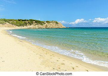 Empty sandy beach - Beautiful sandy beach with crystal clear...