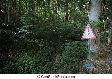 Empty signboard in front of an autumn forest