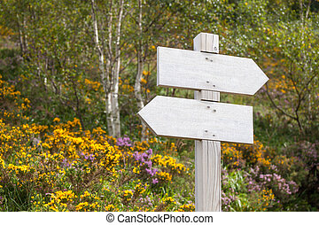 empty signpost in the mountains