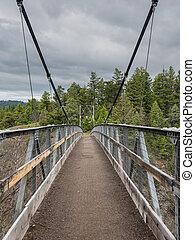 Empty Suspension Bridge crossing canyon in Yellowstone wilderness