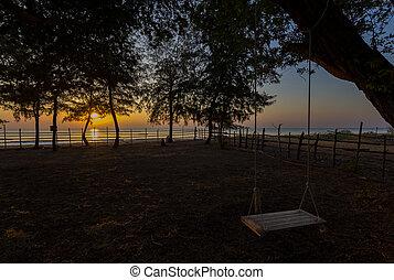 Empty swing hang on the tree