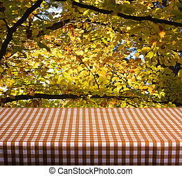 Empty table with orange gingham tablecloth over autumn...