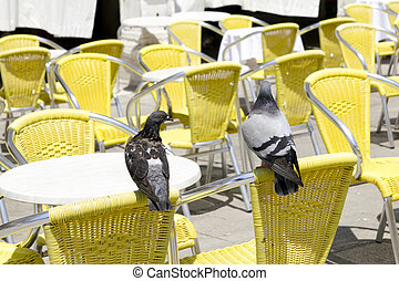Empty tables of sidewalk café with two pigeons