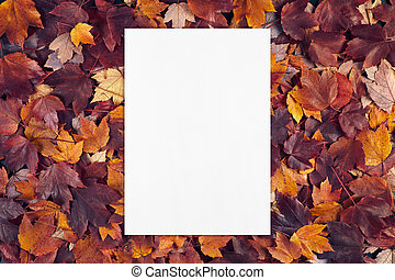 empty white card mockup on fall leaves texture background.